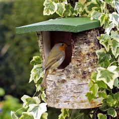 Hang a nesting box or a bird . - Hang a nesting box or bird feeder and give garden birds a home. For titmouse, blackbird, robin and - Bird House Feeder, Bird Feeders, Bird House Kits, Bird Houses Diy, Bird Aviary, Bird Boxes, Garden Types, Nesting Boxes, Birdhouse