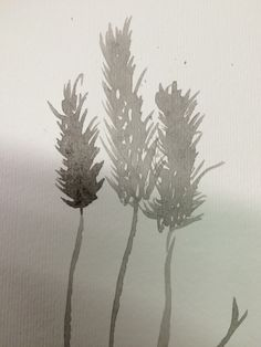 India Ink - wheat