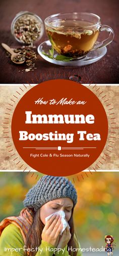 How to Make a Herbal Immune Boosting Tea - and fight cold and flu season naturally!
