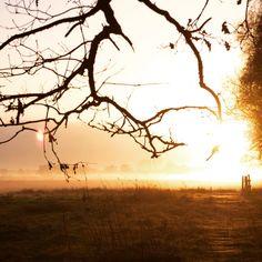 Mooi uitzicht over Vilsteren - Great Vilsteren view   #sunrise #Dalfsen #Vilsteren #Vechtdal