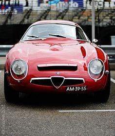 Alfa Romeo TZ #alfa #alfaromeo #italiandesign