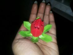 Lotus created using paper