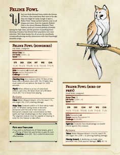 If, by chance, you are still creating homebrew. Dnd Dragons, Dungeons And Dragons 5e, Dungeons And Dragons Characters, Dungeons And Dragons Homebrew, Dnd Characters, Mythical Creatures Art, Mythological Creatures, Magical Creatures, Dnd Stats