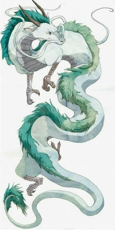 The olm reminded me of a fictional dragon character. Dragon Haku from the . - The olm reminded me of a fictional dragon character. Dragon Haku from the movie Spirited Away - Art Studio Ghibli, Studio Ghibli Movies, Studio Art, Studio Ghibli Tattoo, Tattoo Studio, Totoro, Art Sketches, Art Drawings, Pencil Drawings