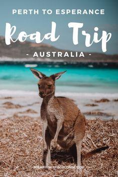 EPIC Perth to Esperance Road Trip Itinerary, Western Australia! Australia Beach, Visit Australia, Western Australia, Esperance Australia, Queensland Australia, Perth, Campervan Australia, New Zealand Travel Guide, Australia Travel Guide