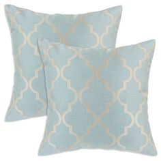I pinned this Decade Pillow (Set of 2) from the Look: Serene event at Joss and Main!