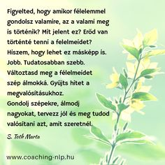Coaching, Life Quotes, Herbs, Tao, Wallpapers, Poster, Training, Quotes About Life, Quote Life