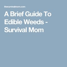 A Brief Guide To Edible Weeds - Survival Mom