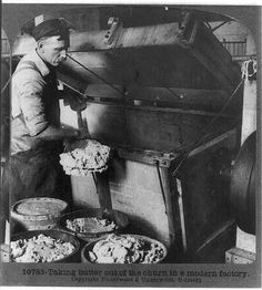 Taking butter out of the churn in a modern factory, circa 1910