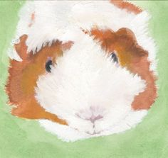 Original Guinea pig watercolour and acrylic by BexCraft101 on Etsy