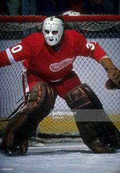 Goalie Mask, Hockey Goalie, Hockey Stuff, Hockey Cards, Detroit Red Wings, Nhl, Superhero, Classic, Sports