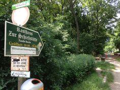 Schilderwald am Lainzer Tiergarten Tours, Nature
