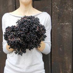 #healthy #herbs #nature #vegan #ilove #naturelover #beautyofnature #autumn