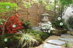 Un décor japonais dans un petit jardin à l'ombre