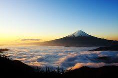 暑期優惠 JR東京來回 富士山車票半價