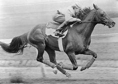 Triple Crown winner- Whirlaway 1941