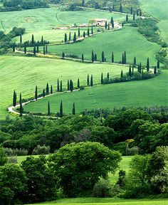 tuscany ~ spend a month. create, paint, sketch, enjoy the culture, the people, the wine.