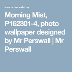 Morning Mist, P162301-4, photo wallpaper designed by Mr Perswall   Mr Perswall