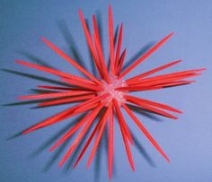 Swimming creatures science: sea urchin from styrofoam ball or ball of clay and colored toothpicks