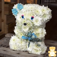 BaBy BOY :)  www.toy.florist