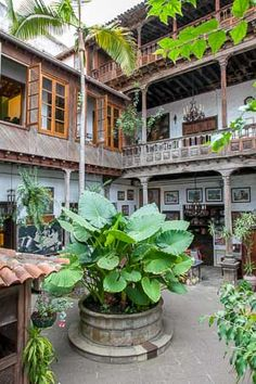 Casa de los balcones, la Orotava Island Design, Canary Islands, Island Beach, Spain Travel, Holiday Travel, Solo Travel, Perfect Place, Places To Go, Beautiful Places