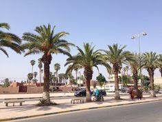 Sur la route de Taroudant - Excursion au départ d'Agadir Maroc - It's 4 You Tours