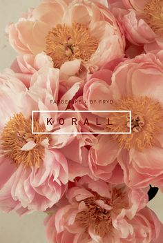 Fototapet K O R A L L, byFryd for Fargerike - i butikk fra Graphic Design Posters, Graphic Design Inspiration, Beautiful Gardens, Beautiful Flowers, Interior Blogs, Identity, Pink Images, Poster Making, House And Home Magazine