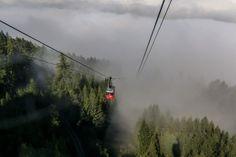 Der goldene Herbst kann auch anders - die verkehrte Welt ist wieder zurück, jetzt gibt es wieder Nebel im Tal und Sonnenschein auf den Bergen. ☀️ .  #meinhausberg #patscherkofel #herbst #mountains #patscherkofelbahn #tirol #innsbruck #austria #visitaustria #alps #autumn Innsbruck, Bergen, Sunshine, Mists, Autumn, Summer, Mountains