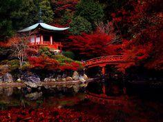 Temple Daigo-ji, Kyoto, Japon, photo 01