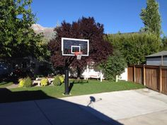 There is her Pro Dunk Platinum Basketball System that is, professionally assembled by her local professional installers, on the side of her large concrete slab court in the backyard of her nice residence.