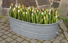 große ovale Zinkwanne, Wanne, Pflanzkübel, Hochbeet, Gartenteich, Blumenkasten