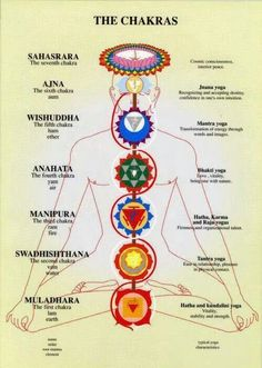 The chakras and related types of yoga