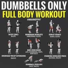 Dumbbell Workout Plan Part Arms Dumbbell Workout Plan - ARMS! All you've got at home is a pair of dumbbells? Fear not? There is Still plenty of moves you can do to hit just about every major muscle group - ARMS. Although all arm dumbbell exercise Full Body Dumbbell Workout, Full Body Workouts, Weight Training Workouts, Gym Workout Tips, At Home Workout Plan, No Equipment Workout, At Home Workouts, Workout Plans, At Home Dumbell Workout