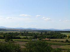 Tudja-e, hogy melyik Magyarország legrégebbi óceánja? Vineyard, Mountains, Nature, Travel, Outdoor, Outdoors, Naturaleza, Viajes, Vine Yard
