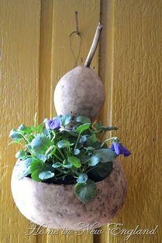 Decorative Gourds, Hand Painted Gourds, Garden Crafts, Garden Projects, Garden Care, Container Plants, Container Gardening, Container Flowers, Gourds Birdhouse