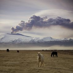 The eruption of Eyjafjallajökull. Iceland. Rebekka Guðleifsdóttir. flickrphotostream. Photo taken April 20, 2010