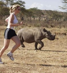 The Safaricom Marathon is a true destination race, with runners racing past the wildlife at Lewa Wildlife Conservancy in Kenya. Animal Rights, Trekking, Conservation, Marathon, Adventure Travel, Places To See, Safari, All About Time, Wildlife