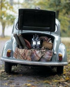Picnic To Go Bug