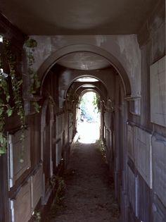 corridor inspiration for Halloween haunt walls