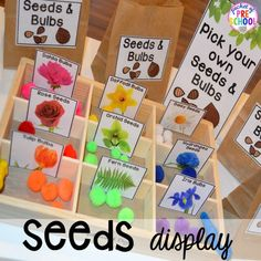 Garden and Flower Shop Dramatic Play Seed display in our Garden Shop Dramatic Play for a spring theme, Mother's Day theme, or summer theme when everything is growing and blooming. Any preschool, pre=k, and kindergarten kiddos will LOVE it (and learn a ton Dramatic Play Themes, Dramatic Play Area, Dramatic Play Centers, Preschool Dramatic Play, April Preschool, Preschool Garden, Preschool Activities, Spring Preschool Theme, Preschool Art Display