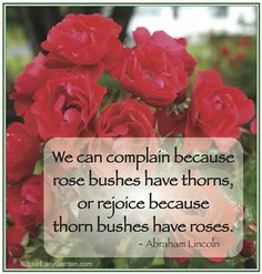 Abraham Lincoln Quote.   Sandra Janeen:  I have come to the point in my life, where I am ready never to complain again.  I am so lucky to be alive and soon able to  pursue fully  again my painting, my drawing, and to live my life full speed ahead.  So,  I will be rejoicing in the magnificent thorn bushes with their glorious rose bushes, every day...Find some way everyday, to outright praise someone, something...not just thinking praise, but actually GIVING praise where I believe I it is due.