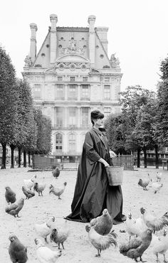 La Contessa – Portrait Shoot Paris My friend Elizabeth in Paris! Carla Coulson does photoshoots of you and your family! Pet Chickens, Chickens Backyard, Old Pictures, Old Photos, Time Pictures, Chicken Art, Vintage Photography, Fashion Photography, Urban Photography