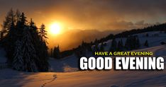 Evening Greetings, Greetings Images, Good Night Greetings, Wishes Images, Good Evening Friends Images, Good Evening Messages, World Earth Day, Save Planet Earth, Telugu New Year