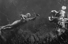 Photo: Creature from the Black Lagoon, Shooting Underwater Scene, 1954 : Tv Movie, Horror Pictures, Sci Fi Films, Famous Monsters, Classic Horror Movies, Black Lagoon, Horror Movie Posters, Classic Monsters, Universal Pictures