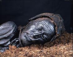 The Curious Case of the Bog Bodies Why do so many corpses found in Europe's peat bogs show signs of violent death?