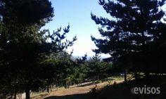 terreno en laguna verde  terreno en laguna verde, en lugar céntrico a pasos de ..  http://valparaiso-city.evisos.cl/terreno-en-laguna-verde-id-640325