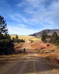 Colorado Western Ranch Road Photo Art by JulieMagersSoulen