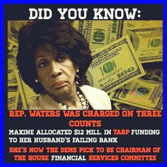 Maxine Waters is the biggest hypocrite racist frauds in politics! Liberal Hypocrisy, Political Corruption, Liberal Logic, Political Views, Politicians, Stupid People, We The People, Maxine Waters, Political Quotes