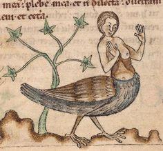 Douai, Bibliothèque municipale, 0711, detail of f. 32. De natura animalium (13th century)