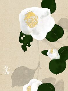 There is another craze is to draw patterns, flowers, mandala patterns in ink. Japanese Illustration, Plant Illustration, Botanical Illustration, Japanese Art Modern, Japanese Artists, Botanical Drawings, Botanical Art, Art Japonais, Plant Drawing